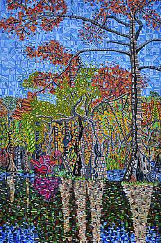 Merchants Millpond State Park 1 by Micah Mullen