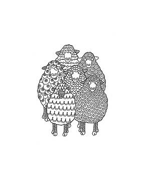 Merino Sheep Flock by Sarah Rosedahl