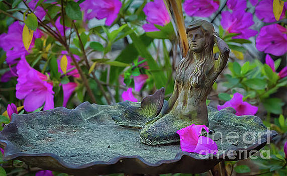 Mermaid Garden Bird Bath by Dale Powell