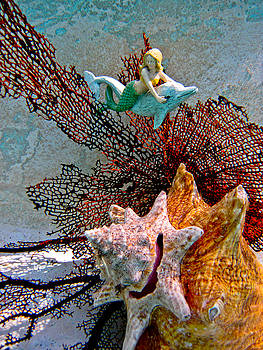 Mermaid on a Dolphin by Barbara Kelley