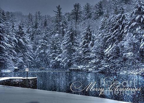 Merry Christmas by Debra Straub