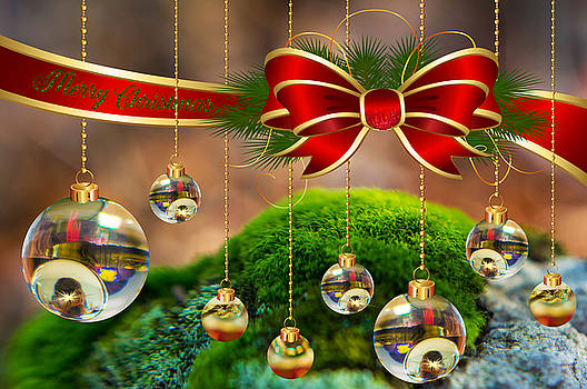 Merry Christmas by Olga Piao