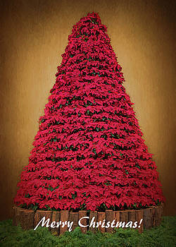 Susan Rissi Tregoning - Merry Christmas - Poinsettia Tree