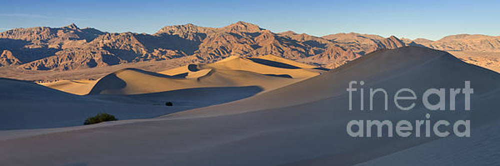 Mesquite Flat Sand Dunes, Death Valley by Justin Foulkes