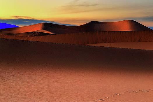 Mesquite Sand Dunes by John Moya