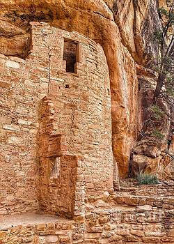 Mess Verde Ruins by Sallie Anderson