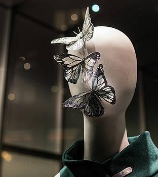 Metamorphosis by Joie Cameron-Brown