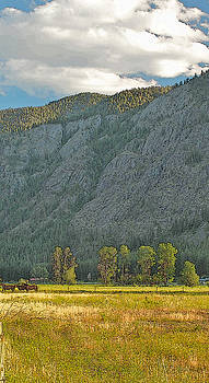 Methow Field Sunset by Larry Darnell