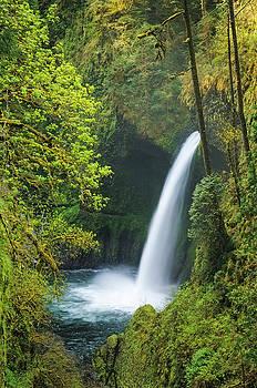 Metlako Falls by Greg Vaughn