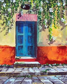 Mexican Door in Speing  by Fernando Gonzalez