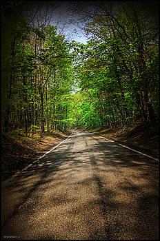 LeeAnn McLaneGoetz McLaneGoetzStudioLLCcom - Mi Tunnel of trees