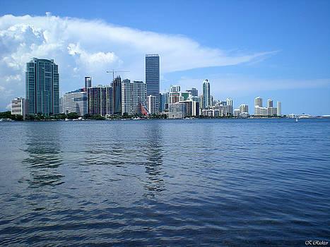 Miami by Keiko Richter