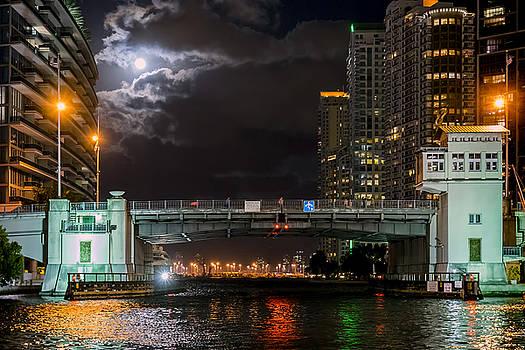 Lynn Palmer - Miami River and Brickell Avenue Bridge