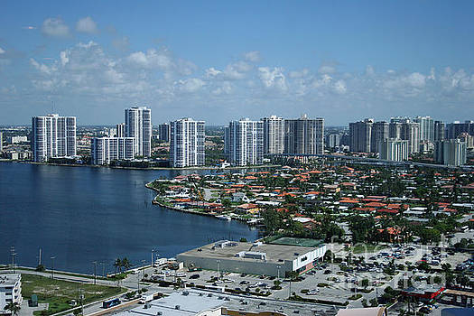 Miami Skyline by Mary Lou Chmura
