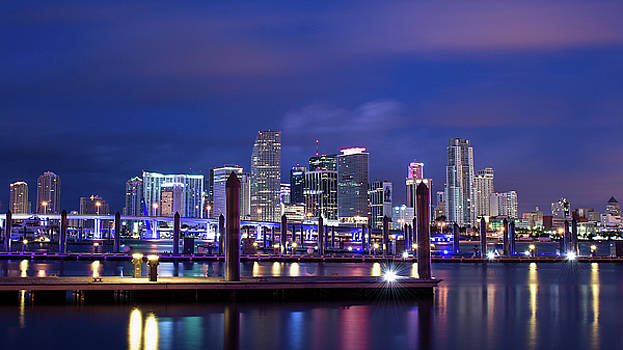 Miami Skyline by Mary Pat Collins