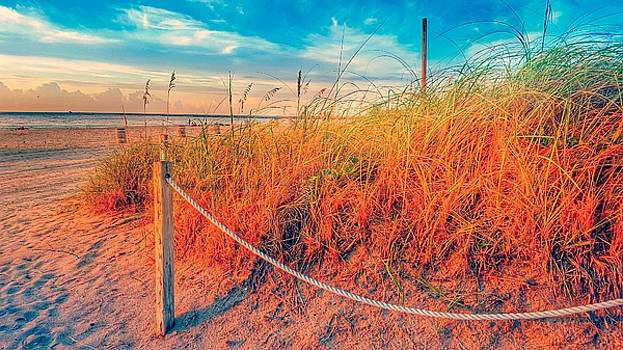 Miami Sunrise B0237 by Roland Macias