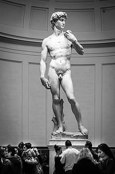 Michelangelo's David by Sonny Marcyan