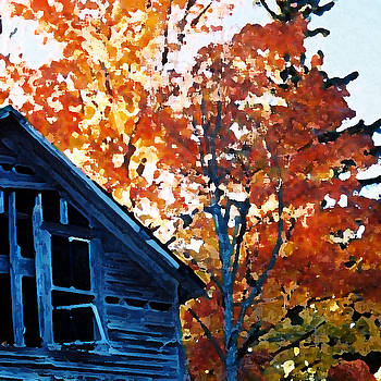 Michigan Autumn III by Sarah Stollberg