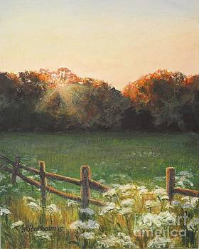 Mid-summer sunset by Anna Starkova
