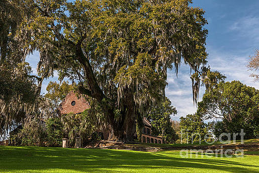 Dale Powell - Middleton Plantation Home in Charleston South Carolina