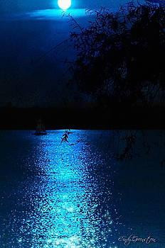 Midnight Blue  by Cindy Greenstein