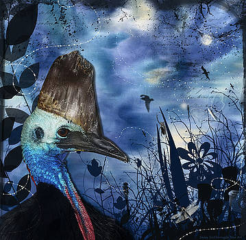 Midnight Cassowary and Fireflies by Lesley Smitheringale
