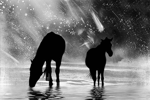 Peggy Collins - Midnight Horses at the Beach Black and White