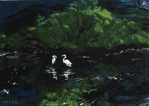 Midnight by Jill Iversen