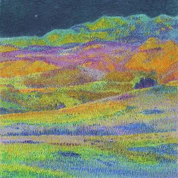 Midnight Magic Dream by Cris Fulton