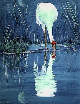 Vicky Lilla - Midnight Moon