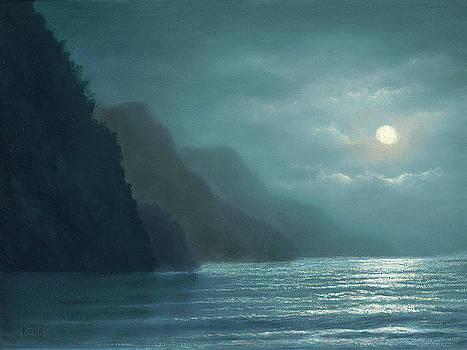 Midnight Moonlight by Steve Kohr