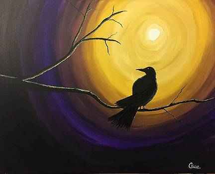 Midnight raven by Chris Bishop