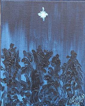 Midnight Sky by Sandra Winiasz