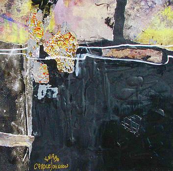 Midnight Sparkle by Carole Johnson