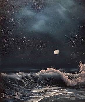 Midnight surf  by Paintings by Justin Wozniak