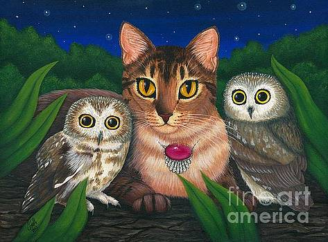 Midnight Watching - Abyssinian Cat Saw Whet Owls by Carrie Hawks