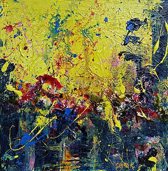 Midnite Garden by Clara K Johnson