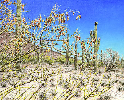 Midsummer Midday Ironwood Seeds by Steve Wilcox