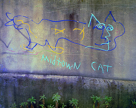 Midtown Cat Atlanta by Alan Mogensen