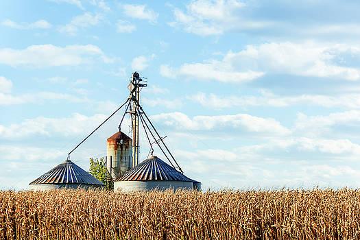 Midwest Farmland by Joni Eskridge