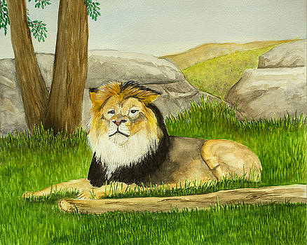 Mighty Lion by Dorothy Riley