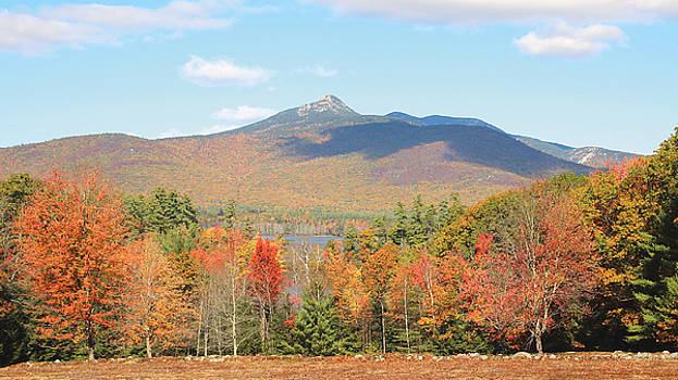 Mighty Mount Chocorua by Steven A Simpson