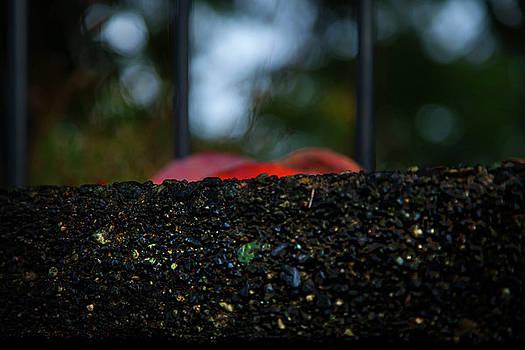 Miksang 2 Autumn Rain City by Theresa Tahara