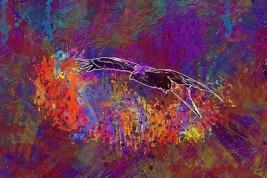 Milan Bird Bird Of Prey Raptor  by PixBreak Art