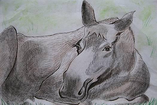 Stella Sherman - Mildred the Moose Resting