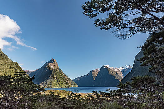 Milford Sound overlook by Gary Eason