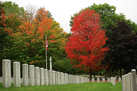 Military Graves and Red Maple by Paul Wash