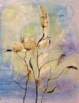 Milkweed by Pat Purdy