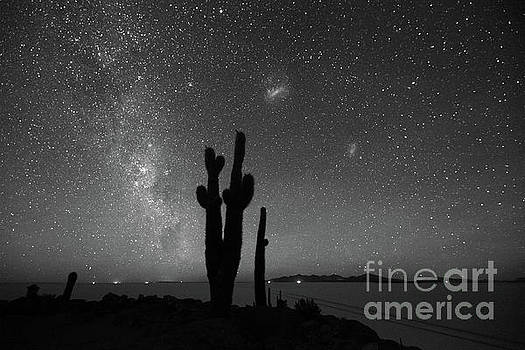 Milky Way Magellanic Clouds and Cactus in Black and White Bolivia by James Brunker