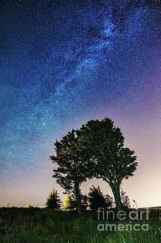 Mariusz Talarek - Milky Way